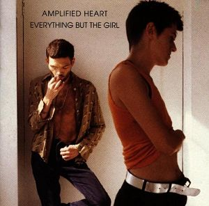 Amplified Heart - New Version [CD]